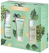 Parfumuri și produse cosmetice Set - Caudalie Vinopure Anti-Blemish Mission (f/ser/30ml + f/ton/50ml + f/gel/30ml)