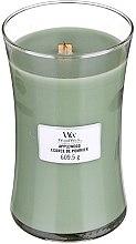 Parfumuri și produse cosmetice Lumânare aromată cu suport din sticlă - WoodWick Hourglass Candle Applewood