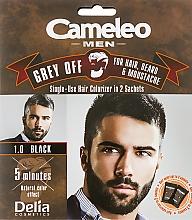 Parfumuri și produse cosmetice Vopsea pentru vopsire instantă a părului gri - Delia Cameleo Men