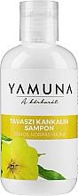 Parfumuri și produse cosmetice Șampon pentru păr gras - Yamuna Primrose Shampoo