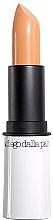 Parfumuri și produse cosmetice Corector-stick matifiant pentru față  - Diego Dalla Palma Concealer Cover Stick