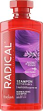 Parfumuri și produse cosmetice Șampon pentru păr gras - Farmona Radical Normalising Shampoo For Oily Hair