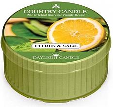 "Parfumuri și produse cosmetice Lumânare de ceai ""Citrice și salvie""  - Country Candle Citrus and Sage Daylight"