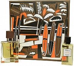 Parfumuri și produse cosmetice Hermes Terre d'Hermes Eau Intense Vetiver Set - Set (edp/50ml +sh/gel/40ml)