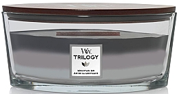 Parfumuri și produse cosmetice Ароматическая свеча в стакане - Woodwick Ellipse Trilogy Mountain Air