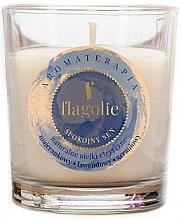 "Parfumuri și produse cosmetice Lumânare aromatică ""Somn liniștit"" - Flagolie Fragranced Candle Rest Sleep"
