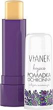 Parfumuri și produse cosmetice Balsam de buze calmant cu ulei de susan - Vianek Lip Balm