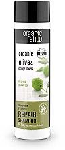 "Parfumuri și produse cosmetice Șampon pentru păr ""Restaurare"" - Organic Shop Organic Olive and Argan Oil Repair Shampoo"