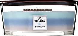 Parfumuri și produse cosmetice Lumânări parfumate - Woodwick Trilogy Woven Comforts Ellipse
