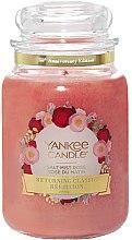 Parfumuri și produse cosmetice Lumânare aromatică în borcan - Yankee Candle Salt Mist Rose Limited Edition