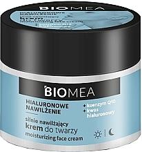 Parfumuri și produse cosmetice Cremă hidratantă de zi și de noapte Coenzima Q10 - Farmona Biomea Moisturizing Face Cream