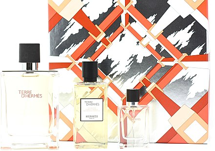 Hermes Terre d'Hermes - Set (edt/100ml + sh/gel/80ml + edt/12,5ml)