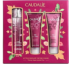 Parfumuri și produse cosmetice Set - Caudalie The Des Vignes Scented Trio (edp/50ml + sh/gel/50ml + b/lot/50ml)