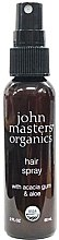 Parfumuri și produse cosmetice Lac de păr - John Masters Organics Hair Spray With Acacia Gum & Aloe (mini)
