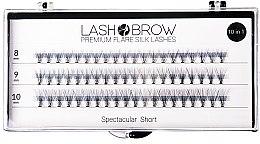 Parfumuri și produse cosmetice Gene false - Lash Brown Premium Flare Silk Lashes Spectacular Short