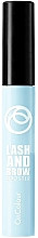 Parfumuri și produse cosmetice Gel nuanțator pentru sprâncene și gene - Oriflame OnColour Lash and Brow Booster