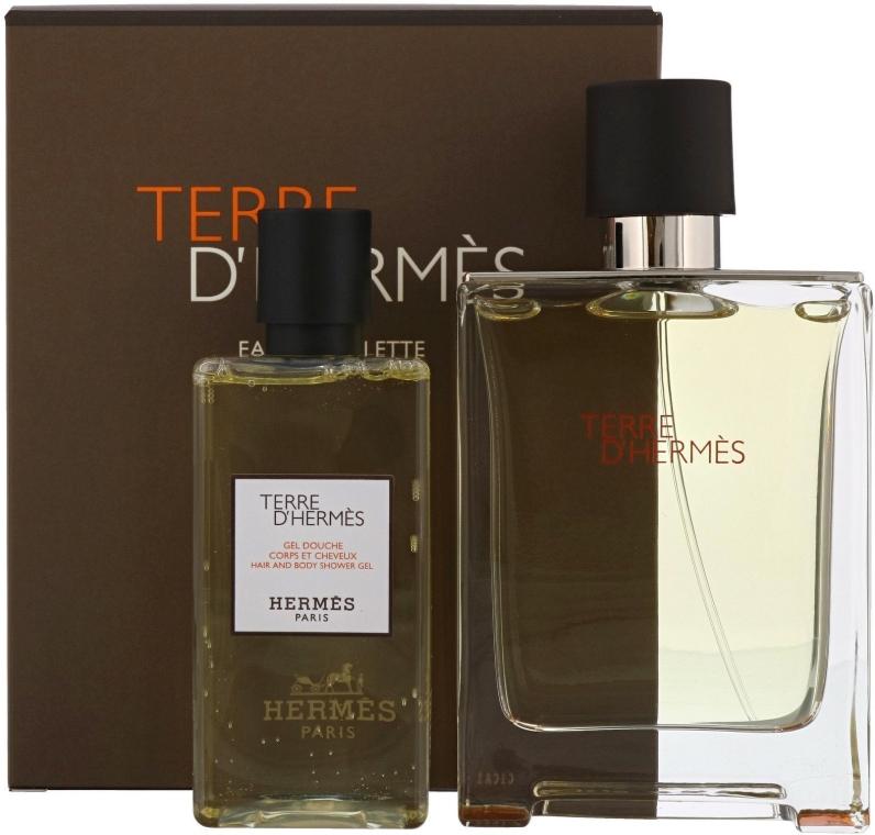 Hermes Terre dHermes - Set (edt/100ml + sh/g/80ml)
