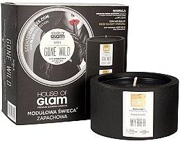 Parfumuri și produse cosmetice Lumânare parfumată - House of Glam Girls Gone Wild Candle