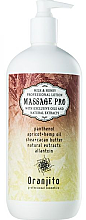 Parfumuri și produse cosmetice Lapte pentru masaj - Oranjito Massage Pro Milk & Honey Massagem Body Milk
