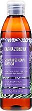 Parfumuri și produse cosmetice Șampon pentru păr gras și predispus la mătreață - Barwa Herbal Lavender Shampoo