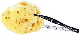 Parfumuri și produse cosmetice Burete pentru curățarea feței - LullaLove