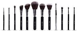 Parfumuri și produse cosmetice Set de pensule machiaj - Nanshy Masterful Collection Onyx Black (Brush/12buc)