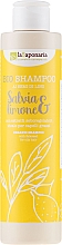 """Parfumuri și produse cosmetice Șampon de păr """"Salvie și lămâie"""" - La Saponaria Salvias & Limone Bio Shampoo"""