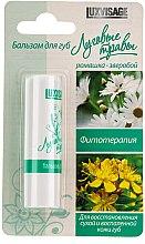 """Parfumuri și produse cosmetice Balsam de buze """"Ierburi de luncă"""", Mușețel-Pojarniță - Luxvisage"""