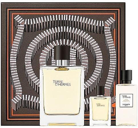 Hermes Terre D'Hermes - Set (edt/100 ml + ash/40 ml + edt/5 ml)