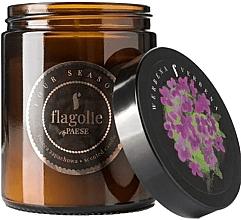 """Parfumuri și produse cosmetice Lumânare parfumată, în borcan """"Verbena"""" - Flagolie Fragranced Candle Verbena"""