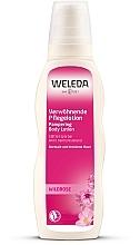 Parfumuri și produse cosmetice Lapte nutritiv pentru corp, cu extract de trandafir sălbatic - Weleda Wildrose Verwohnende Pflegelotion