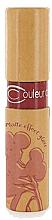 Parfumuri și produse cosmetice Luciu de buze mat - Couleur Caramel Matte Effect Lip Gloss