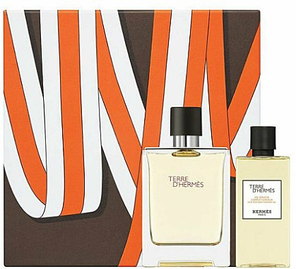 Hermes Terre d'Hermes - Set (edt/100ml + sh/gel/80ml)