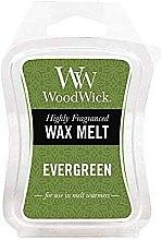 Parfumuri și produse cosmetice Ceară aromatică - WoodWick Wax Melt Evergreen