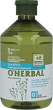 Parfumuri și produse cosmetice Șampon pentru păr uscat și fragil cu extract de in - O'Herbal