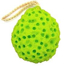 Parfumuri și produse cosmetice Burete pentru curățarea feței, verde - W7 Zen Spa Sponge