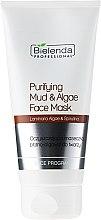 Parfumuri și produse cosmetice Mască de față cu alge și argilă - Bielenda Professional Purifying Mud and Algae Face Mask