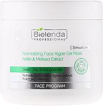 Parfumuri și produse cosmetice Mască pentru față cu alge și argilă verde - Bielenda Professional Normalizing Face Algae Gel Mask